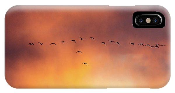Towards The Sun IPhone Case