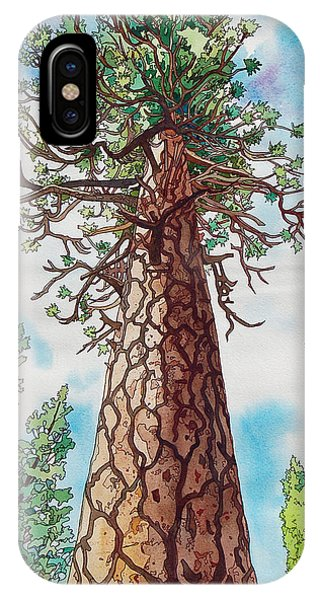 Towering Ponderosa Pine IPhone Case