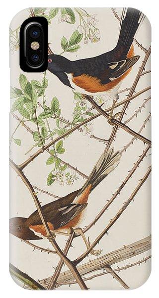 Bunting iPhone Case - Towhe Bunting by John James Audubon