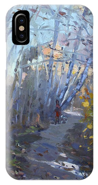 Georgetown iPhone Case - Trail In Silver Creek Valley by Ylli Haruni