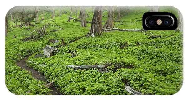 Trail Through Pololu Valley IPhone Case