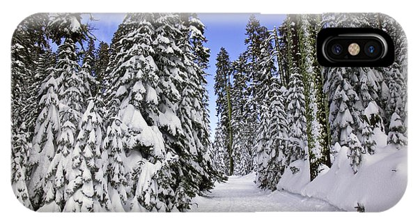Snowy Road iPhone Case - Trail Through Trees by Garry Gay