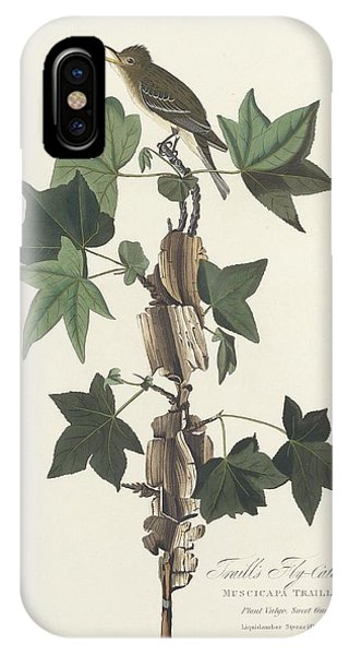 Traill's Flycatcher IPhone Case