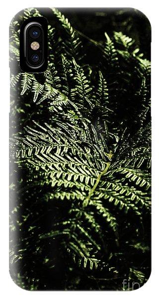 Garden Wall iPhone Case - Tranquil Botanical Ferns by Jorgo Photography - Wall Art Gallery