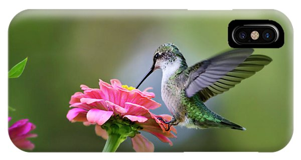 Tranquil Joy IPhone Case