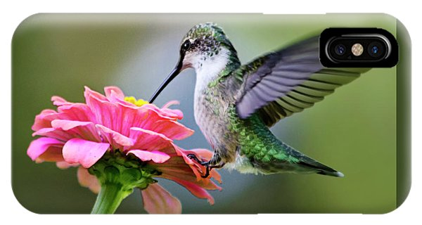Tranquil Joy Hummingbird Square IPhone Case