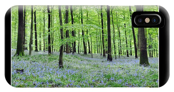 Tranquility - Bluebells In Woods IPhone Case