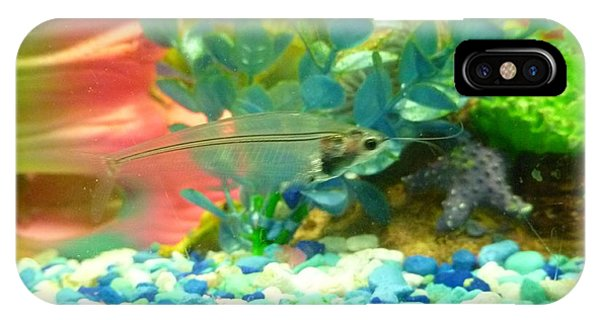 Transparent Catfish IPhone Case