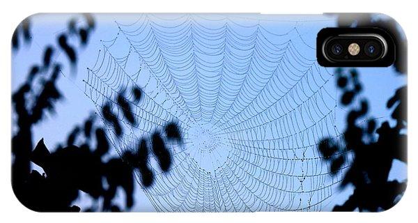 Transparent Web IPhone Case