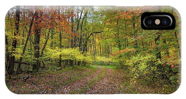 Travels Through Autumn IPhone Case