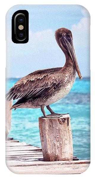 Treasure Coast Pelican Pier Seascape C1 IPhone Case