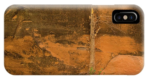 Tree And Sandstone IPhone Case