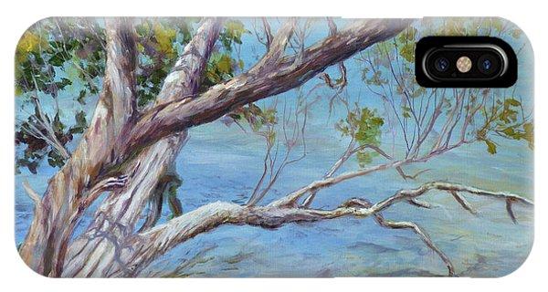 Tree At Islamorada Key IPhone Case