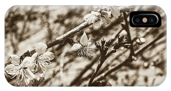 IPhone Case featuring the photograph Tree Blossom A by Jacek Wojnarowski