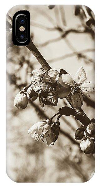 IPhone Case featuring the photograph Tree Blossom B by Jacek Wojnarowski