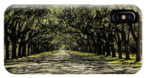 Tree Covered Approach IPhone Case
