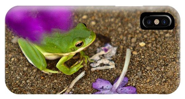 Crossville iPhone X Case - Tree Frog Under Flower by Douglas Barnett