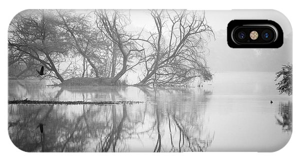Tree In A Lake IPhone Case