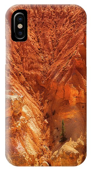 Tree In Bryce IPhone Case