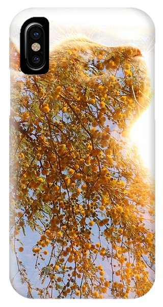 Tree In Cat IPhone Case