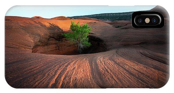 Tree In Desert Pothole IPhone Case