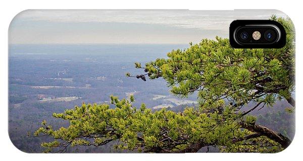Treeline iPhone Case - Tree In The Sky by Cassia Rivera