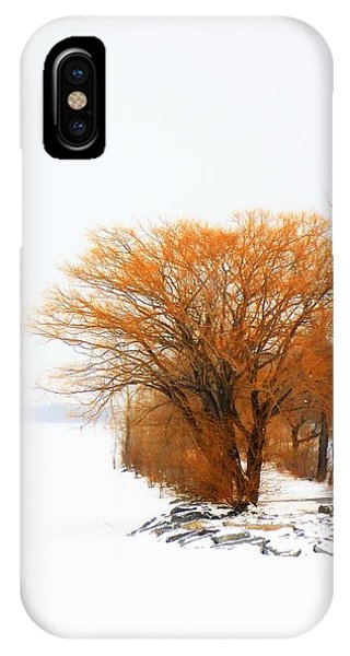 Tree In The Winter IPhone Case