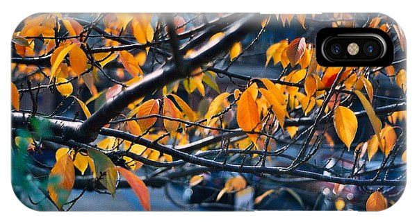 Tree In View Phone Case by Simonne Mina