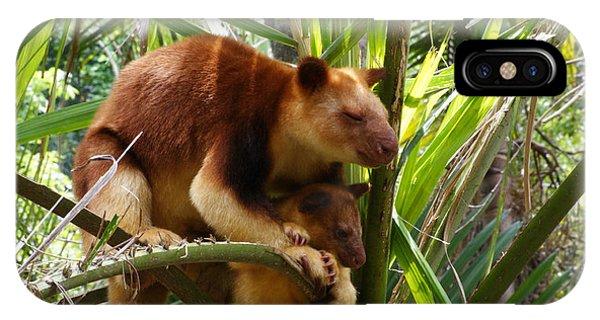 Tree Kangaroo 1 IPhone Case