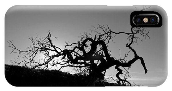 Tree Of Light Silhouette Hillside - Black And White  IPhone Case
