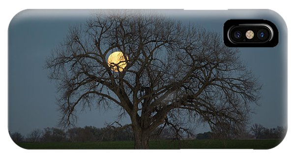 Middle Of Nowhere iPhone Case - Tree Of Supermoon by Aaron J Groen