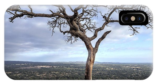 Tree On Enchanted Rock - Square IPhone Case