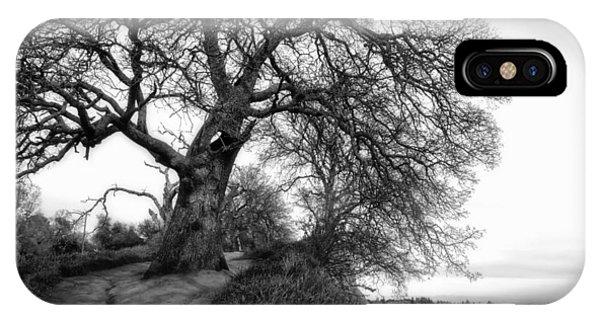 Tree On Ridge - Black And White IPhone Case