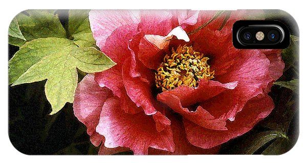 Tree Peony IPhone Case