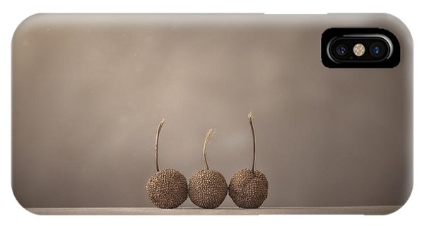 Minimalist iPhone Case - Tree Seed Pods by Scott Norris