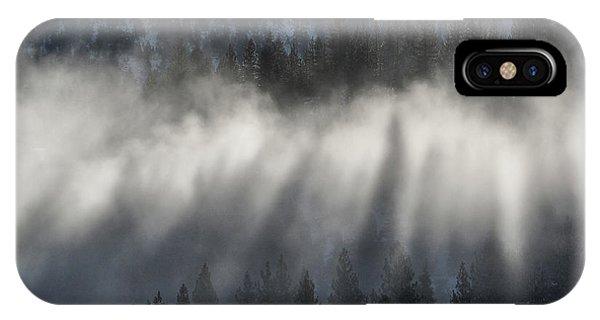 Tree Shadows IPhone Case