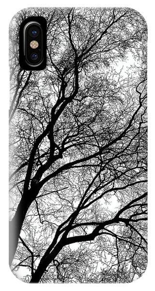 Tree Silhouette Series 1 IPhone Case