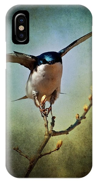 Tree Swallow 2 IPhone Case