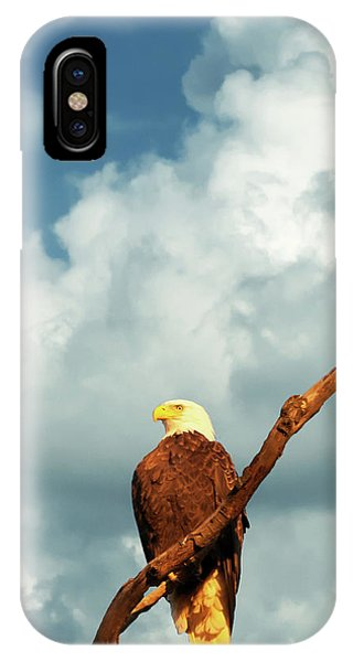 Tree Top Eagle  IPhone Case