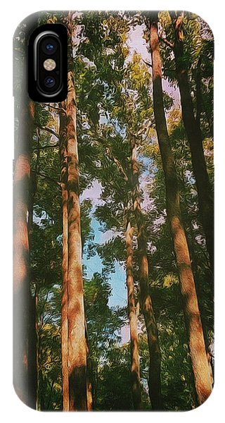 Tree Trunks IPhone Case
