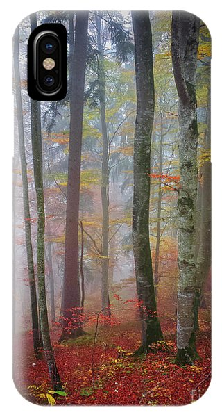 iPhone Case - Tree Trunks In Fog by Elena Elisseeva