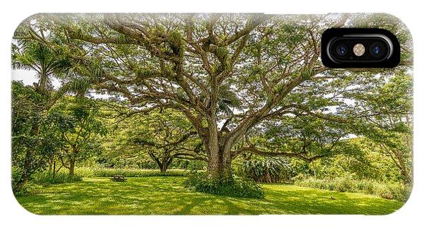 Treebeard IPhone Case