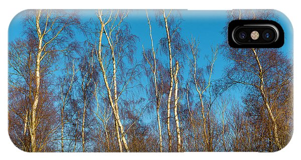 Trees And Blue Sky IPhone Case