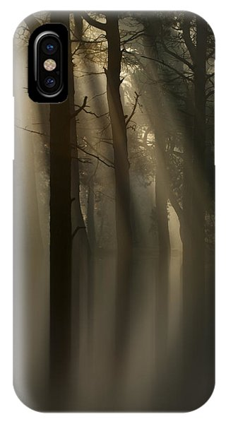 Trees And Light IPhone Case