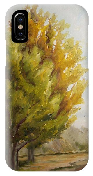 Trees In Boulder IPhone Case