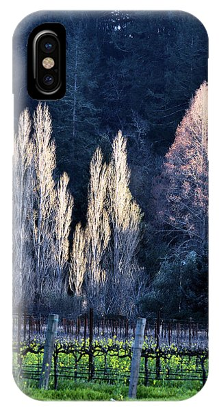 Trees In Fall Napa Valley IPhone Case