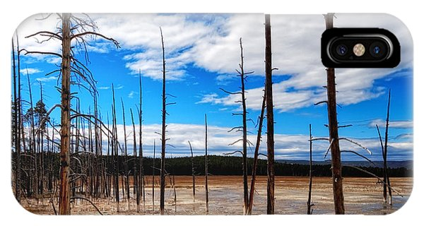 IPhone Case featuring the photograph Trees In The Midway Geyser Basin by Lars Lentz
