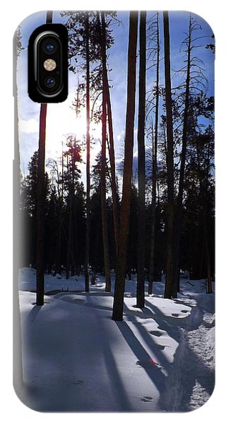 Trees In Winter IPhone Case