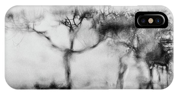 Trees Through The Window IPhone Case