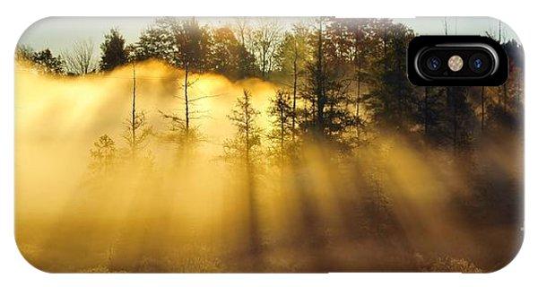 Treetop Shadows IPhone Case